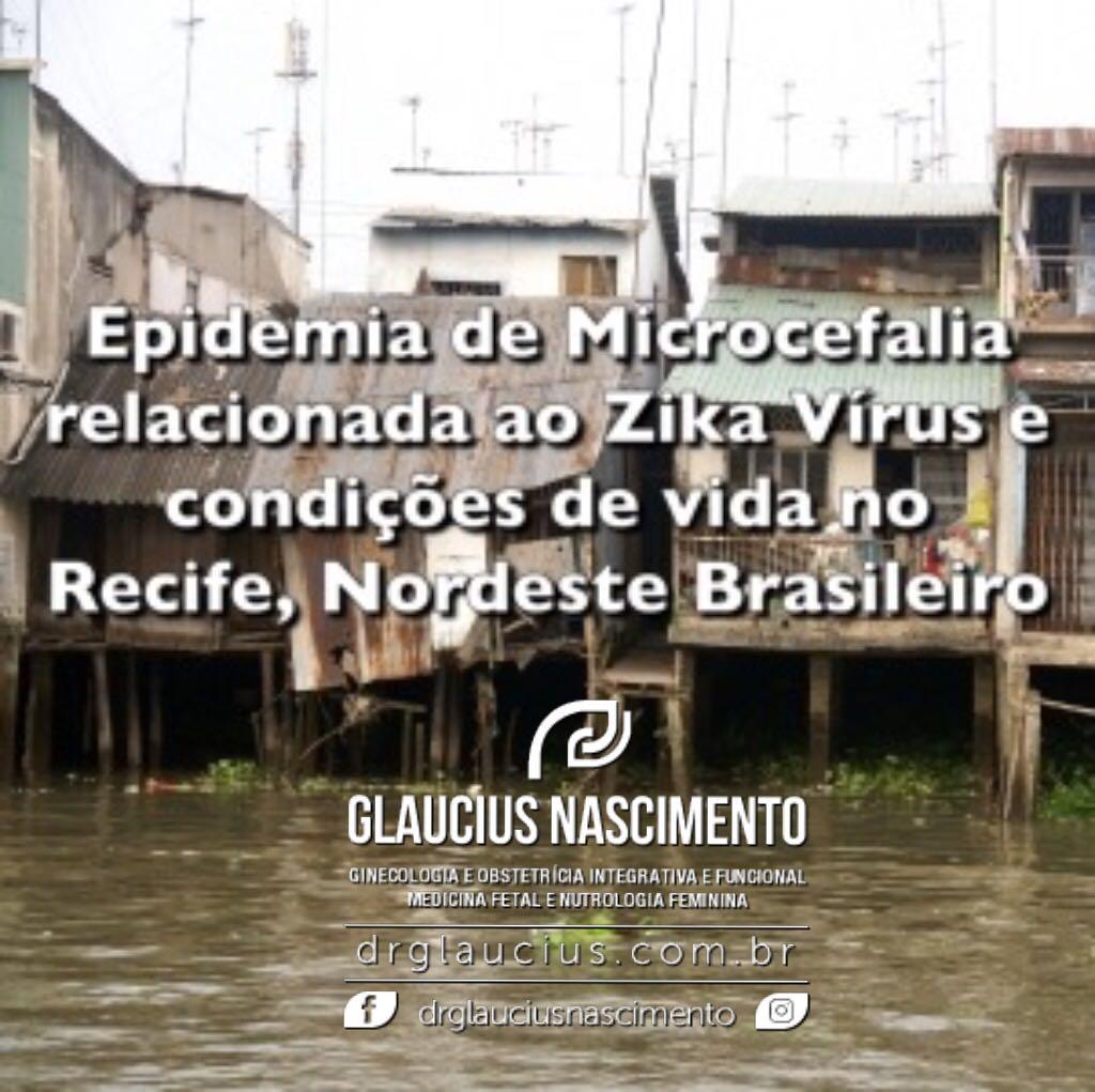 Zika e microcefalia