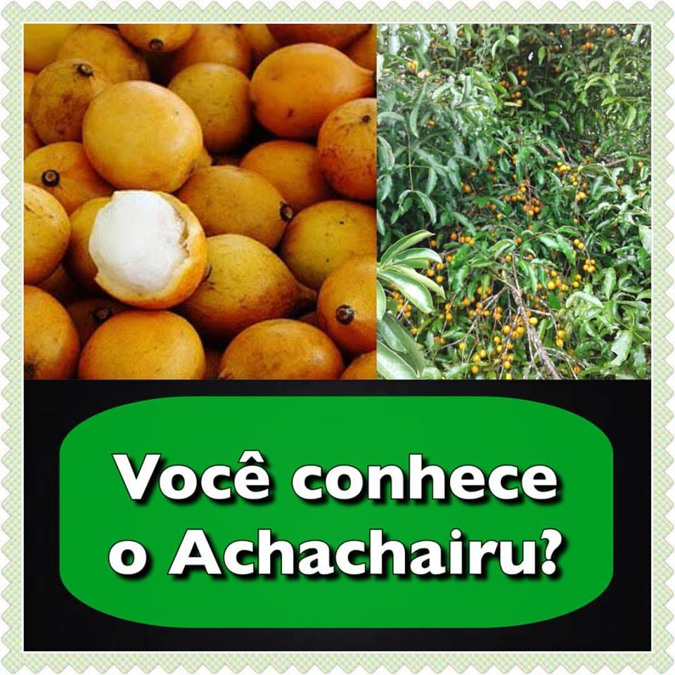 achachairu