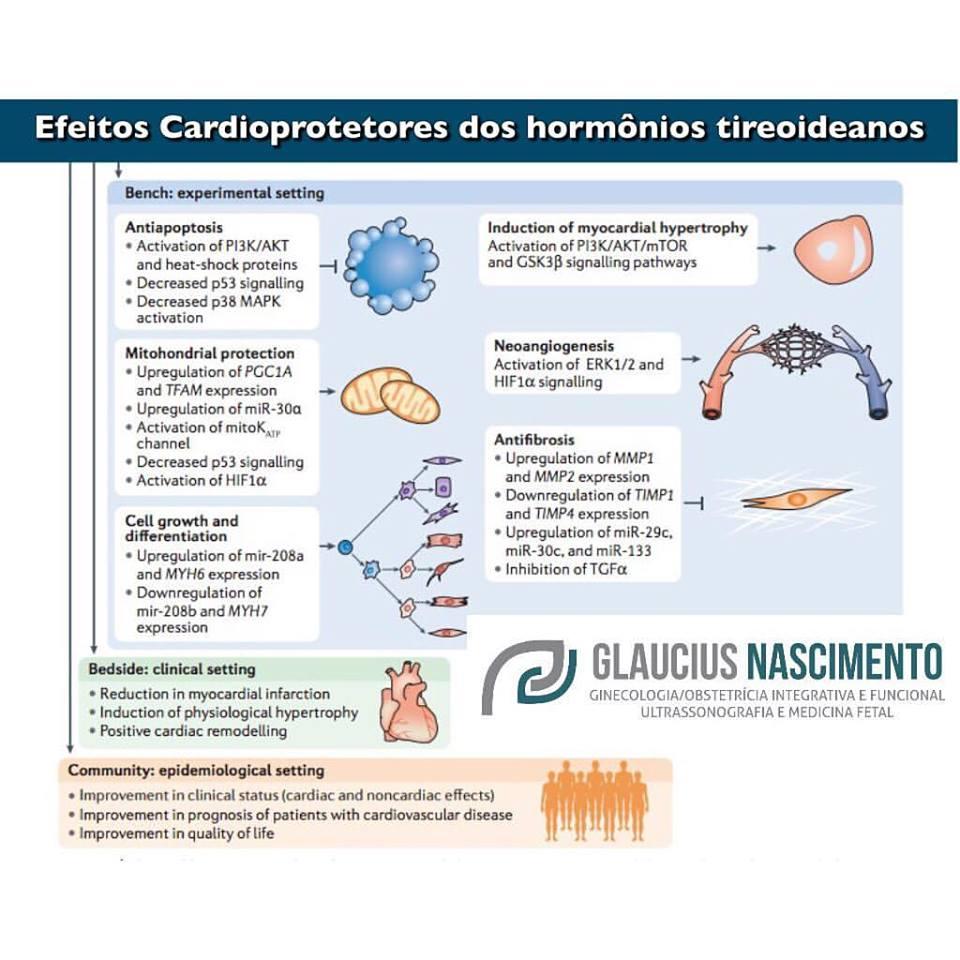 trecardiotop